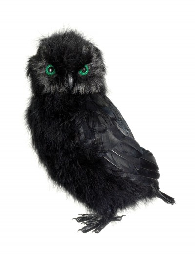 14 Inch Black Owl buy now
