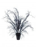 20'' Black Weeping Tree buy now