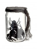 5.5 Inch Glass Jar w/ Spiders buy now