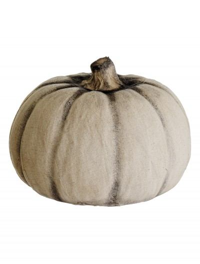 9 inch White Pumpkin buy now