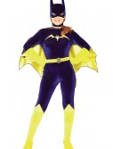 Adult Batgirl Costume buy now