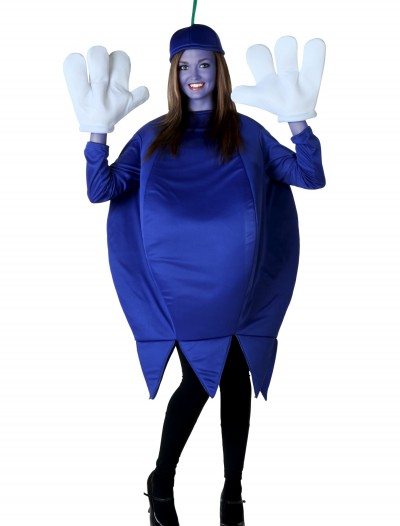 Adult Blueberry Costume buy now