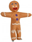 Adult Gingerbread Man Costume buy now