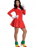 Adult Knuckles Dress Costume buy now