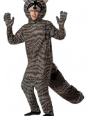 Adult Raccoon Costume buy now