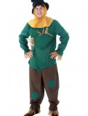 Adult Scarecrow Costume buy now
