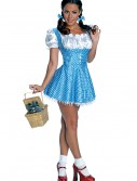 Adult Sequin Dorothy Costume buy now