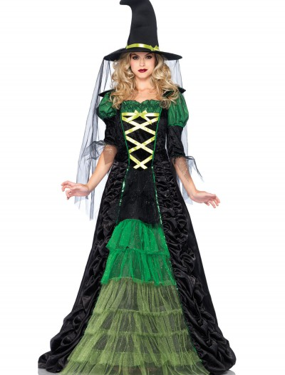 Adult Storybook Witch Costume buy now