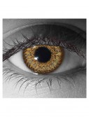 Hazel Contact Lenses buy now