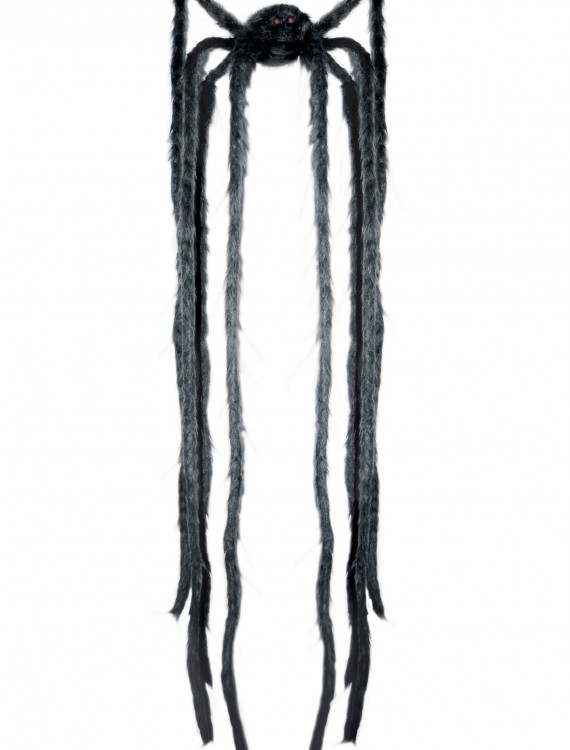 Animated Long Leg Spider buy now