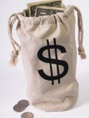 Bank Money Bag buy now