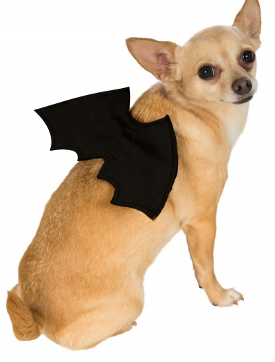 Bat Wings Pet Costume buy now