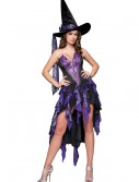 Bewitching Beauty Costume buy now