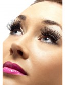 Black Eyelashes buy now