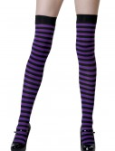 Black / Purple Striped Stockings buy now