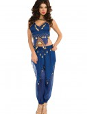 Blue Belly Dancer Costume buy now