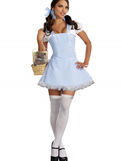 Blue Gingham Dress Costume buy now