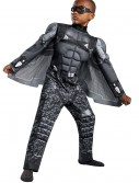 Boys Falcon Classic Muscle Costume buy now