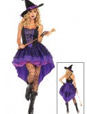 Broomstick Babe Witch Costume buy now