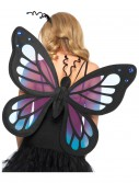 Butterfly Wings buy now