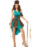 Celtic Warrior Costume buy now