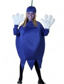 Child Blueberry Costume buy now