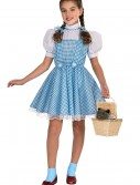 Child Deluxe Dorothy Costume buy now