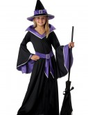 Child Glamour Witch Costume buy now