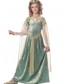 Child Queen Guinevere Costume buy now