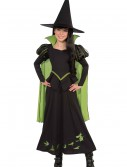 Child Wicked Witch of the West Costume buy now
