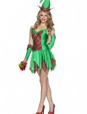 Christmas Elfin Magic Costume buy now