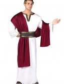 Deluxe Caesar Costume buy now