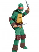Deluxe Child Raphael Costume buy now