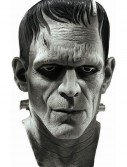 Deluxe Frankenstein Mask buy now