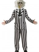 Deluxe Teen Beetlejuice Costume buy now