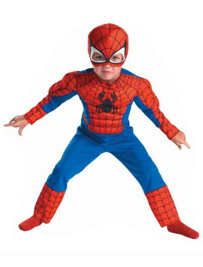 Deluxe Toddler Spiderman Costume buy now