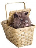 Deluxe Toto with Basket buy now