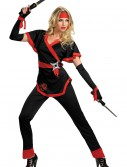 Dragon Lady Ninja Costume buy now
