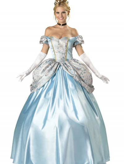 Elite Enchanting Princess Costume buy now