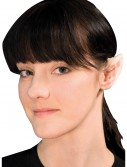 Fairy Ear Tips buy now