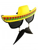 Fiesta Sunglasses buy now