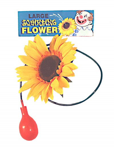 Giant Squirting Sunflower buy now