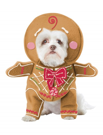 Gingerbread Pup Dog Costume buy now