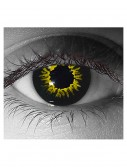 Gothika Black Wolf Contact Lenses buy now