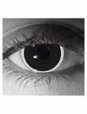 Gothika Eclipse Contact Lenses buy now