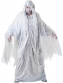 Haunting Spirit Costume buy now