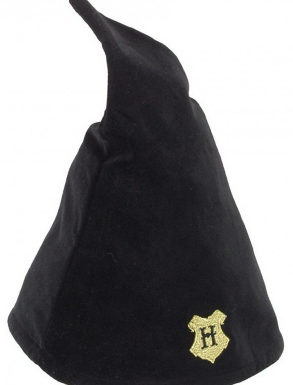 Hogwarts Student Wizard Hat buy now