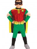 Kids Deluxe Robin Costume buy now