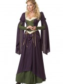 Lady in Waiting Costume buy now