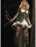 Lady Robin Hood Costume buy now